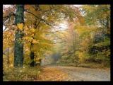 Леонид Семаков - Осенний вальс