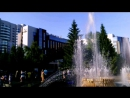 VLOG / День Города Новосибирска • NSK City ♥