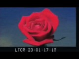 A$AP Rocky - Canal St. feat. Bones Unofficial Video