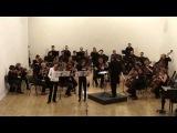 М.Брух Концерт для скрипки и альта ми минор ор 88