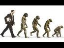 Белов А И От человека к обезьяне Теория Инволюции