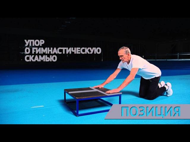 Сгибание разгибание рук на гимнастической скамье