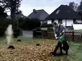 как избавиться от крота)