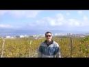 Песня о Новороссийске 2016 г. «Новороссийск я тебя люблю» Low, 360p