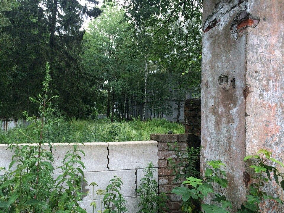Заброшенная психбольница Алленберга (Калининград)