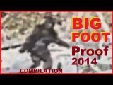 BIGFOOT Best Evidence 2014 - Sightings of Sasquatch, Yeti &amp Bigfoot COMPILATION