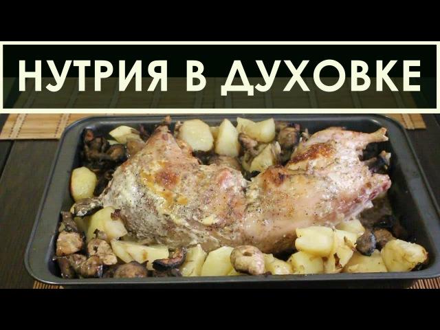 Рецепт приготовления нутрии в духовке - в сметане с картошкой и грибами