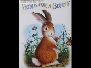 HOME FOR A BUNNY Preschool Children's Audio Board Book Read Aloud, written by Margaret Wise Brown