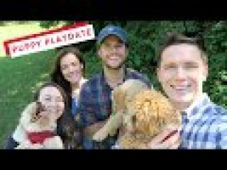 Puppy Playdate with Kiel James Patrick and Sarah Vickers