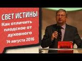 Валерий Треногин - Как отличить плотское от духовного