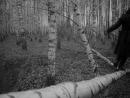 «Иваново детство» |1962| Режиссер: Андрей Тарковский | драма, военный, экранизация