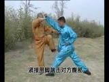 Shaolin 5 combinations kung fu (wu he quan), combat methods