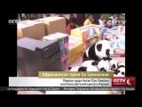Первая леди Китая Пэн Лиюань посетила Детский центр в Хараре