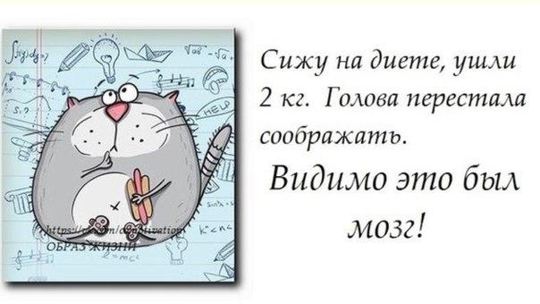 https://pp.vk.me/c630325/v630325677/e47d/IIcQwSrGFzQ.jpg