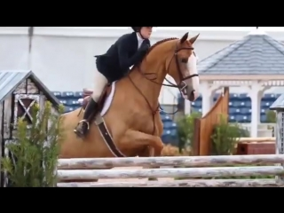 Since you guys loved my last wef video