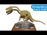 Скелет велоцираптора светящийся в темноте. Обзор игрушки динозавра