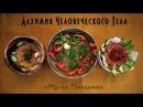 Магия питания и советы тибетских лам