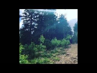 nargis fakhri leaked jungle video