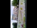 детский сад 113 Танец Шляпки