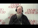 Радио «Радонеж». Протоиерей Димитрий Смирнов. Видеозапись прямого эфира от 2015.11.14