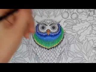 Раскрашивание совы ;) Secret Garden Coloring Book (Page 5)
