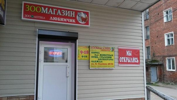 Наталья печатников вышний волочек вк знакомства киев девушки для любви