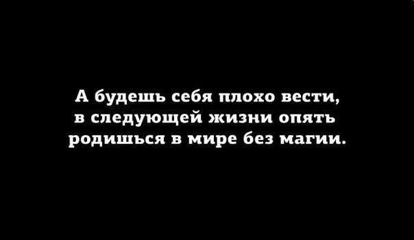 Александр Вандер, Москва - фото №6