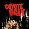 БАР ГАДКИЙ КОЙОТ Казань /Coyote Ugly