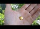 Алматинский Клондайк (рассыпное месторождение золота) Золотые пески ущелья Алма - Арасана