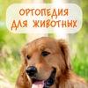 Ортодог. Ортопедия для животных