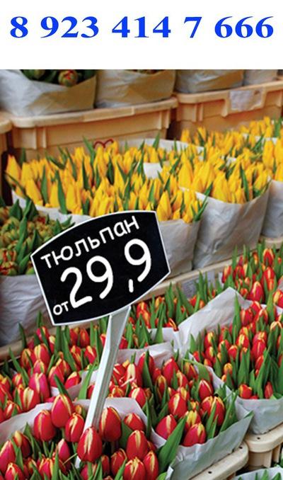 Томск оптовая база цветов — photo 9