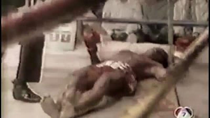 50 Muay Thai Knockouts That Define An Era