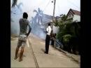 08176795221 Jasa Fogging Nyamuk Demam Berdarah di Denpasar Bali