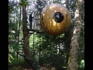 Современные папуасы или невероятные дома на деревьях автор клипа Зоя Боур-Моска...