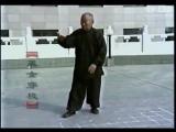 Тайцзицюань, мастер Сунь Дэмин - форма Лаолюлу и применение