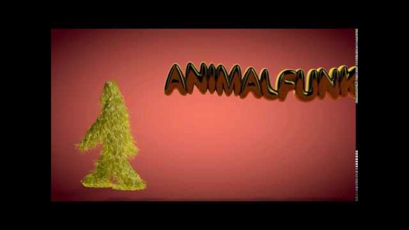 ANIMAL FUNK 2016