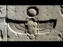 Grebennikov Beetles Levitation Vortices Shape Power