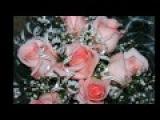 Олег Лифановский   Розы для тебя