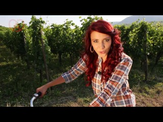 La Route des Vins d'Alsace vue par Delphine Wespiser