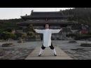 Taiyi Swimming Dragon - Lu Jian