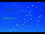 Песня группы Голубые береты - Одуванчики