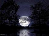 Insomnium Daughter Of The Moon