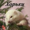 ♥♡ ☆ХОРЬКИ Нижний Новгород☆♡ ♥
