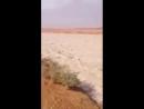 «Песочная река» в Саудовской Аравии » Триникси
