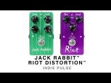 SUHR JACK RABBIT RIOT DISTORTION - INDIE PULSE