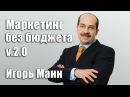 Маркетинг без бюджета 2 0 Советы на 2017 год Игорь Манн Вебинары