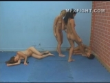 Four Brazilian ladies fistfight and belly punching