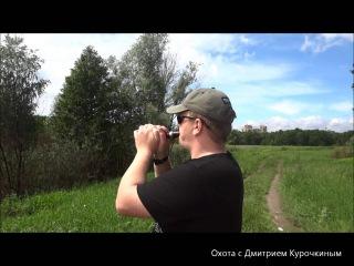 Как научиться манить белолобого гуся. Часть 1.