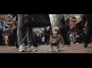 Hong Kong handheld: SLR Magic 1.33x Anamorphic cine lens shots