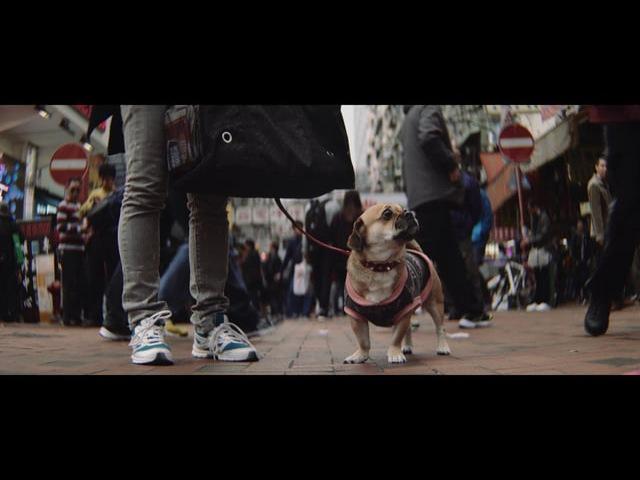 Hong Kong handheld: SLR Magic 1.33x Anamorphic cine lens shots